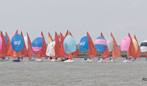 Squib Nationals 2019