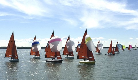 2016 Squib Gold Cup