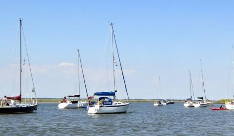 Cruiser Picnic and Seal Safari at Yokesfleet
